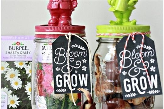 Flower Garden in a Jar