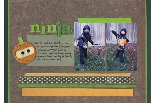 The Ninja Costume