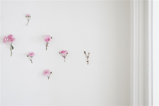 A DIY Wild Rose Wallpaper Backdrop