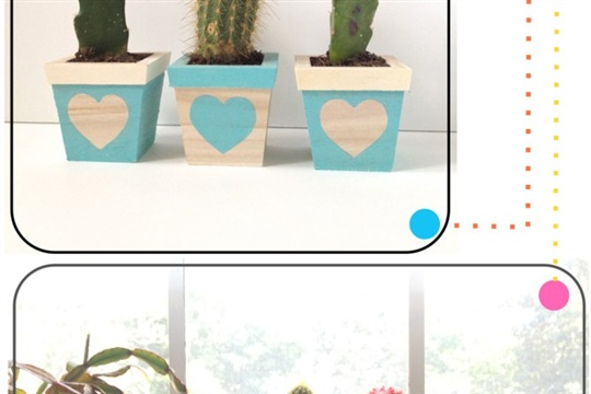 Try This Prickled Heart Planter Trio
