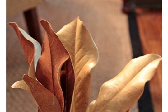Making A Fall Magnolia Wreath