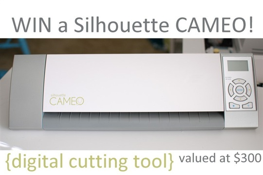 Silhouette CAMEO GIVEAWAY!! + Sweater Pillow