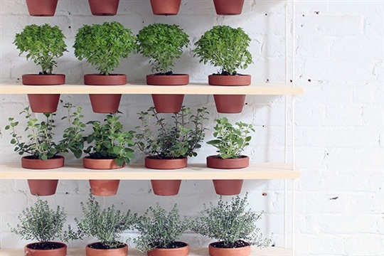 This DIY Hanging Planter is the Perfect Urban Garden
