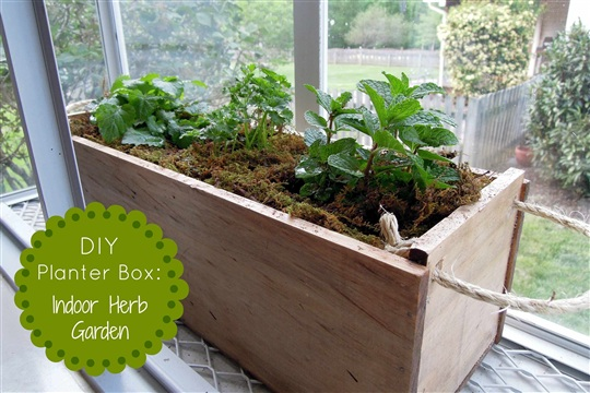 DIY Planter Box Herb Garden The Gro Project